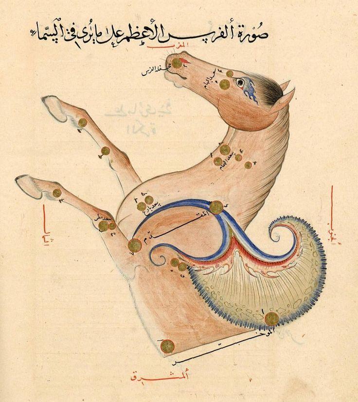 Costellazione di Pegaso, ʿAbd al-Raḥmān ibn ʿUmar al-Ṣūfī, Kitāb ṣuwar al-kawākib al-ṯābita, , Samarcanda. 1430-1440 (BnF, Arabe 5036, fol. 93v)