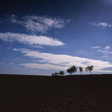 "Saatchi Art Artist Paul Cooklin; Photography, ""Edition 1/10 - Walsham Le Willows"" #art"
