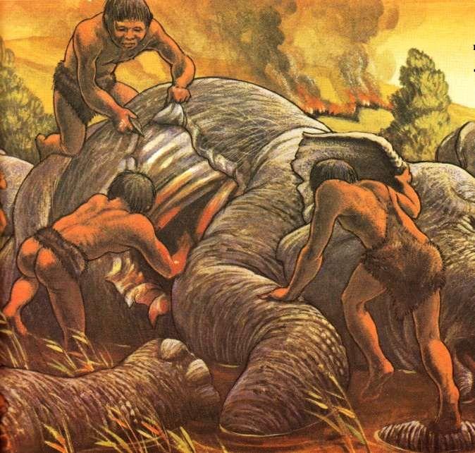 первобытные охотники разделывают труп слона на охоте. охота