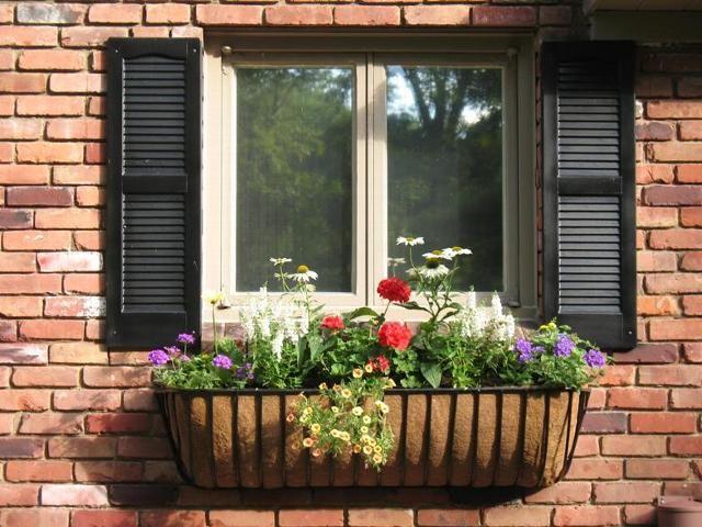 Wrought Iron Window Boxes Wrought Iron Window Boxes