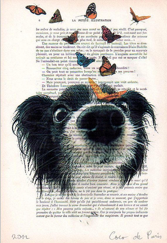 Doggy with butterflies: Drawing Illustration Giclee Prints Posters Mixed Media Art Acrylic Painting Wall art wall decor
