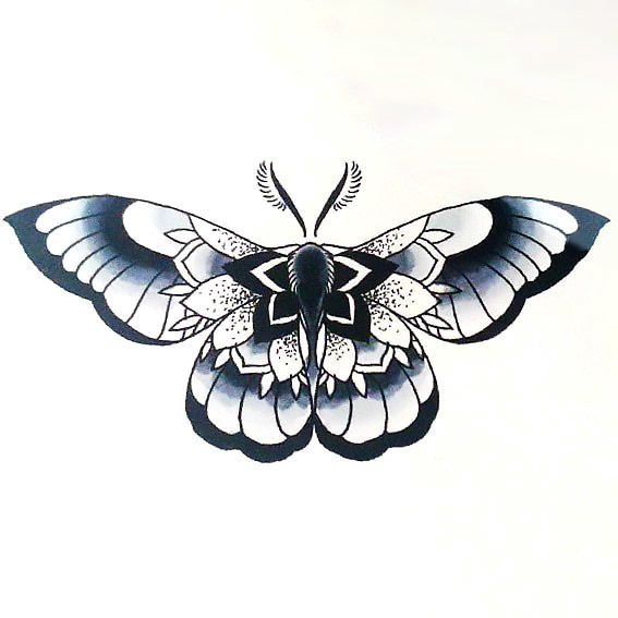Beautiful Moth Tattoo Design In 2020 Moth Tattoo Moth Tattoo Design Tattoo Designs For Girls