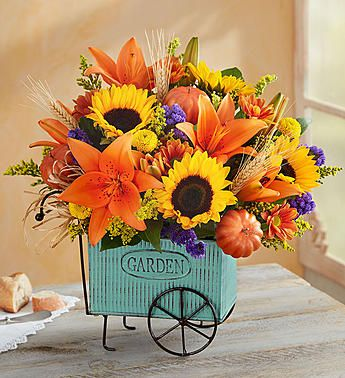Harvest Garden Cart™  EXCLUSIVE Keep the autumn beauty rolling along. Our beau…