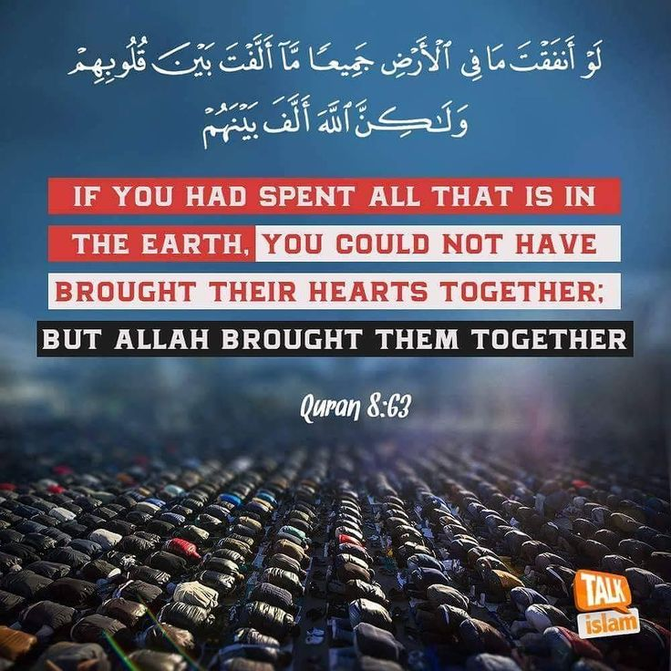 Quran #islam #muslim #Allah #Quran #ProphetMuhammadpbuh #instagram #photo #photooftheday #beautiful #photography #advicequotes #lord #god #love #man #men #woman #women #india #girl #girls #boys #pictures #Facebook #twitter #guidance #truth #heart #heaven #photogrid