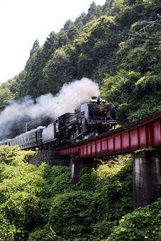 Chichibu, Saitama, Japan  http://www.pinterest.com/xbowler/rr-bridges-and-tracks-and-tunnels/