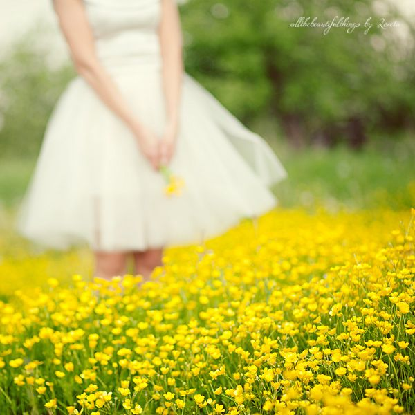 .: Yellow Flowers, Field Of Flowers, Photo Ideas, Dress, Flower Photos, Flower Fields, Photography Flowers, Flowers Photo