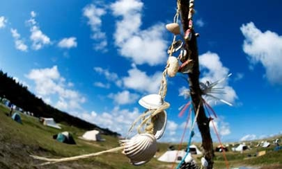 Into the Spring Festival on the island of Vlieland end of April: I'm going!!!