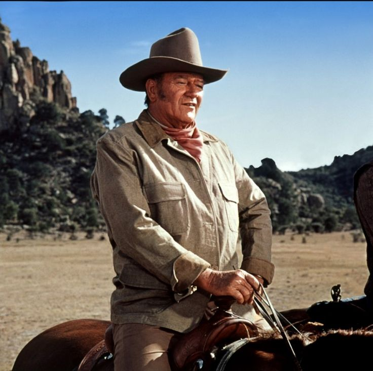 The Undefeated (1969) - John Wayne