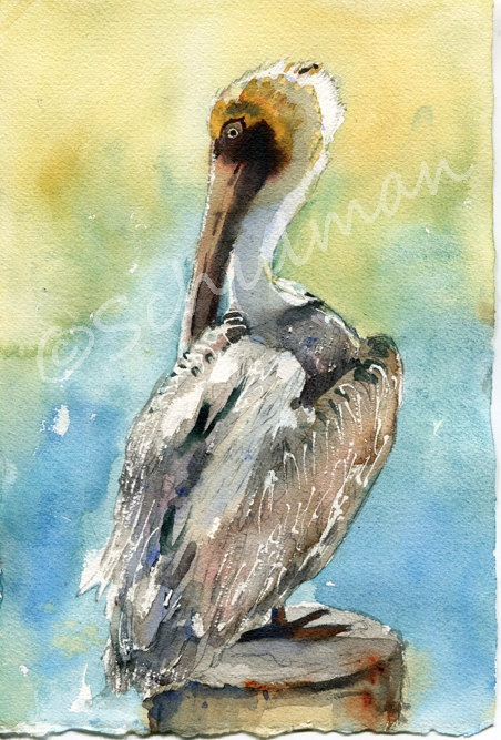 "If you love wildlife artwork of birds then you will love this watercolor painting of a white pelican. This original watercolor paintings pictures a white pelican with golden feathers on his beak sitting atop a pier that overlooks an aquamarine ocean. This white pelican would be the perfect addition to your bird art collection, especially if you like water birds!  _________________________________________________    Title: Pelican Brief  Size: 7.5x11"" before framing  $99"