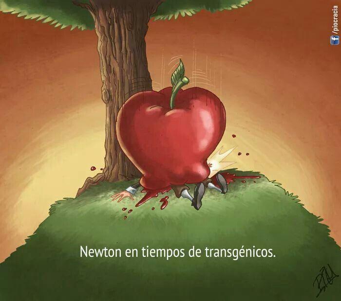 Newton en tiempos transgenicos