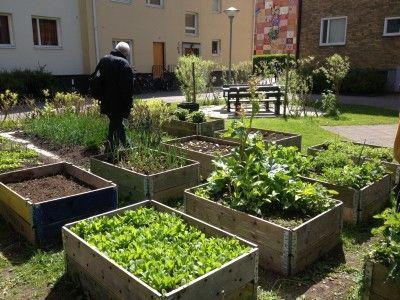 400x300-9103-vyber-sevede-zahrada-mezi-bytovkami.jpg (400×300)