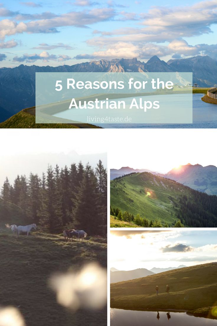 5 Reasons why it is also really nice to go to the Austrian Alps in Summer. There are so many Activties you can do! We were in Saalbach Hinterglemm. Sunsets, Horse Riding, Hiking, ...
