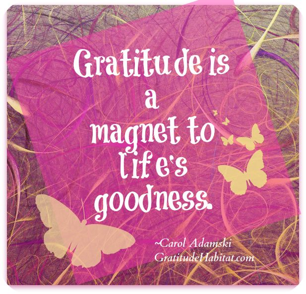Image result for gratitude fills my life quotes gif