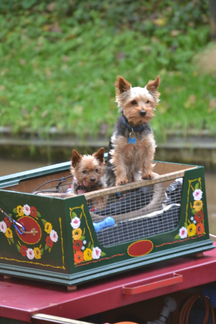 Living on a canal boat by Sharon Wheelock