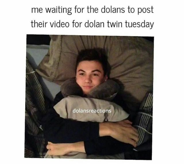 38 Best Images About Dolan Twin Memes On Pinterest There