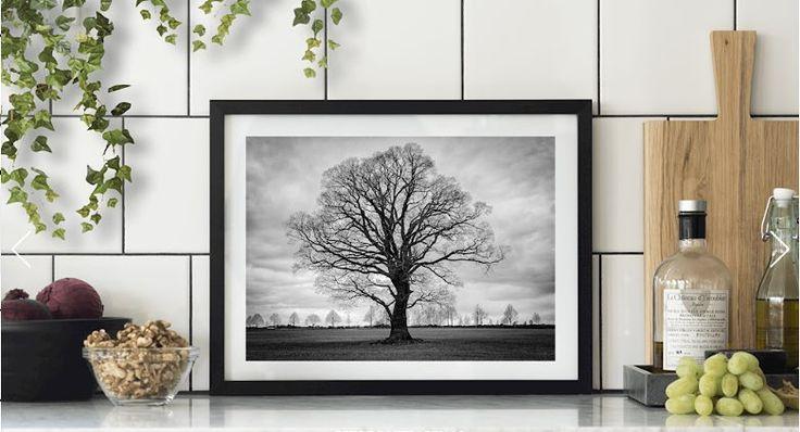Om du vill ha unika bilder till ditt hem! Titta in på @printler.se och www.printler.se #swedisgimages #fotograf #jonas_fotograf #igsweden #ig_sweden #meralink #östergötland #linköping #lkpgcity #lkpg #sweden_photolovers #sverige
