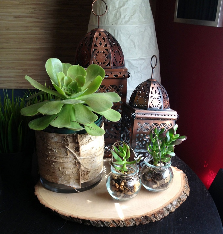 Birch Bark Wedding Centerpiece with succulents