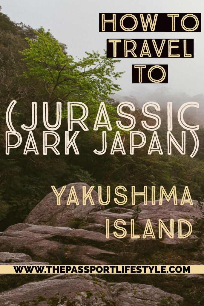 The Ultimate Guide and travel tips on how to travel to Yakushima Island, Japan or Japan's real life Jurassic Park! Yakushima Island is famous for its beautiful Moss Forest, thousand year old forests and trees, Shiratani forest, Princess Momonoke, and more! Don't miss this beautiful UNESCO World Heritage hiking spot! | thepassportlifestyle.com