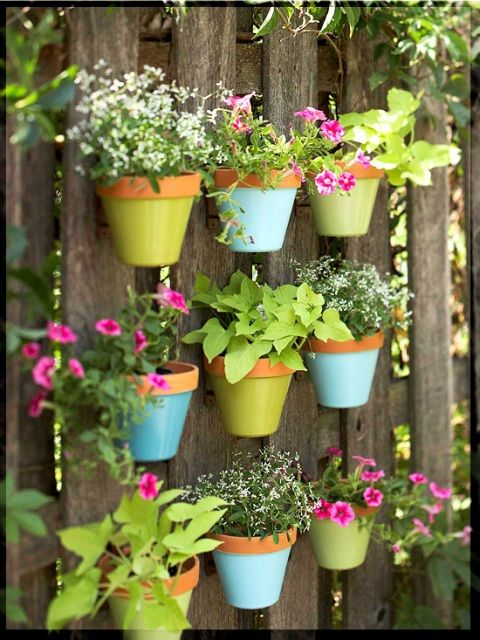 I could see painting dollar store pots and creating a fun look along a fence or backyard space.