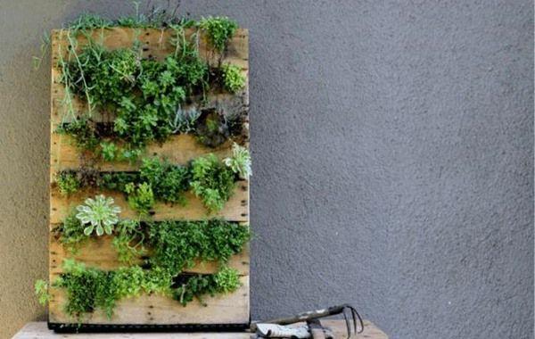Aprenda como fazer jardim vertical com pallet passo a passo com fotos e vídeo! Use paletes de madeira para fazer um jardim vertical!