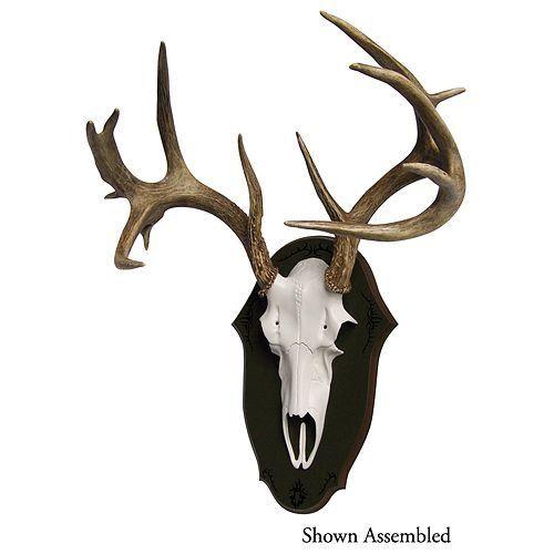 48 best antler mount ideas images on Pinterest | Deer ...