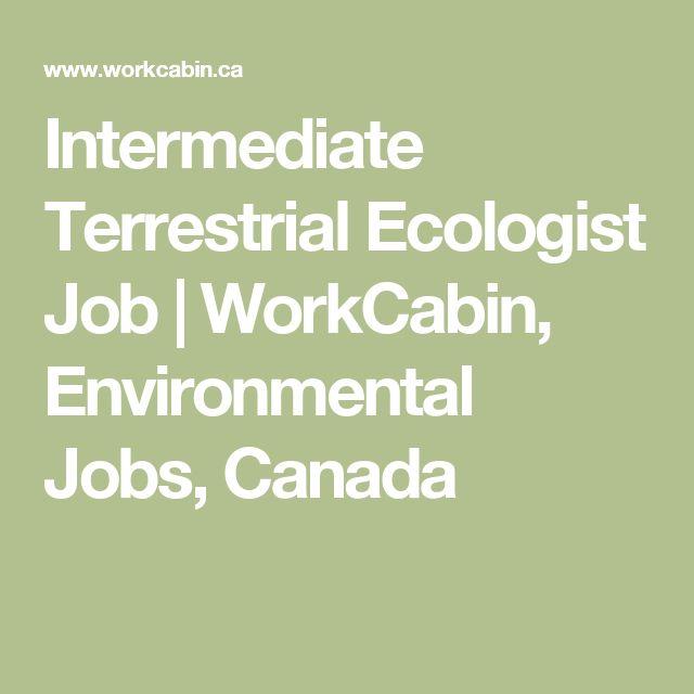 Intermediate Terrestrial Ecologist Job | WorkCabin, Environmental Jobs, Canada