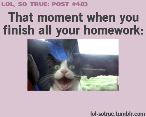 17 Best Images About Funny Lol On Pinterest: 17+ Best Ideas About Funny Kids Homework On Pinterest