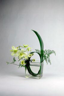   Ikebana. Minimal Ikebana.  