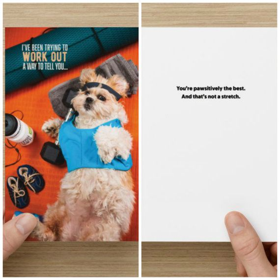 "The Frumpy Dog Thank You Card: ""I've been trying to work out a way to tell you... You're pawsitively the best. And that's not a stretch"""