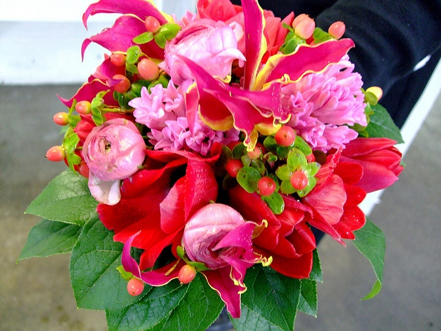 These flowers: hyacinth, gloriosa lilies, hypericum berries, ranunculus, open tulips, anemones. All the guys will have really simple boutonnières with chartreuse hypericum berries and greenery, excep I love flowers  Please check out my website www.photopix.co.nz