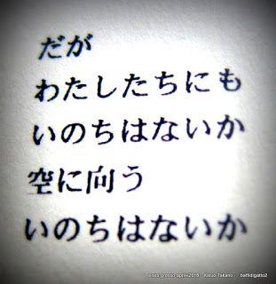 """baffidigatto: ((Da """"Stagno"""" di Kikuo Takano - a cura di Yasuko M..."""