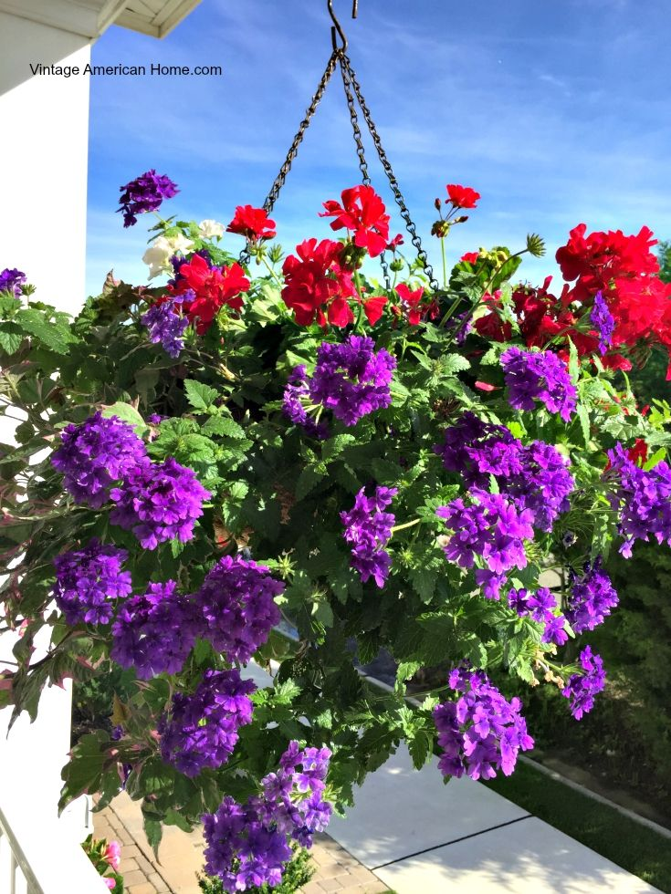 Top 30 curb appeal tricks curb appeal gardens and hanging plant - Flowers hanging baskets porches balconies ...