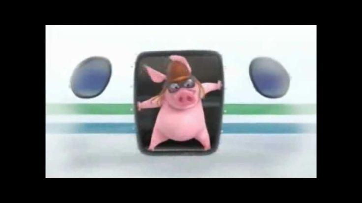 MM - Momento Motivação - Veja a porquinha que nunca desiste de seus Sonh...