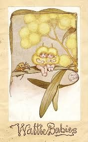 wattle babies by May Gibbs