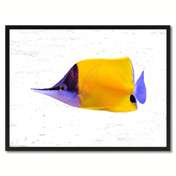 633 best Fish Art, Home Decor, Gift Ideas images on Pinterest ...
