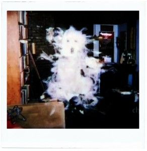 Polaroid Ghost True Ghosts Pinterest