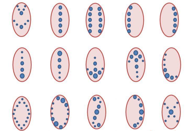 Схемы возможного расположения рисунков на ногтях