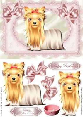 Cute yorkie dog with bows in lace frame on Craftsuprint designed by Nick Bowley - Cute yorkie dog with bows in lace frame makes a lovely card - Now available for download!