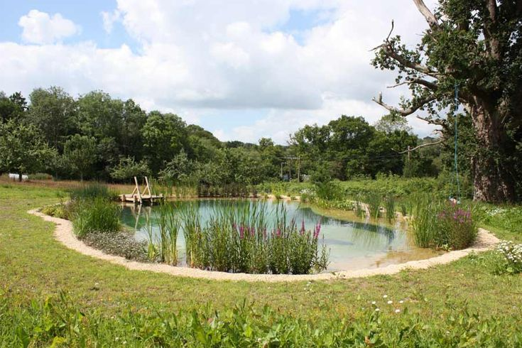 Natural Swimming Pool Excellent For Country Setting Garden Outdoors Pinterest Swimming