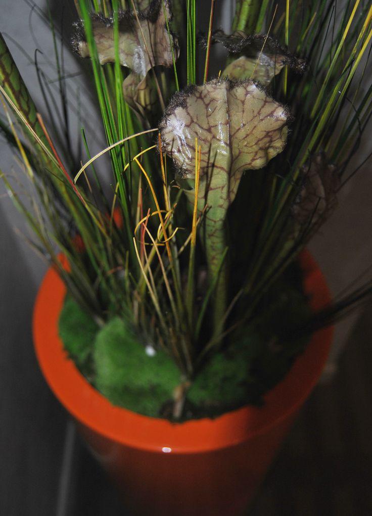 Design végétal