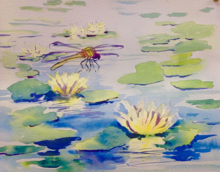 Watercolour  Lily pads