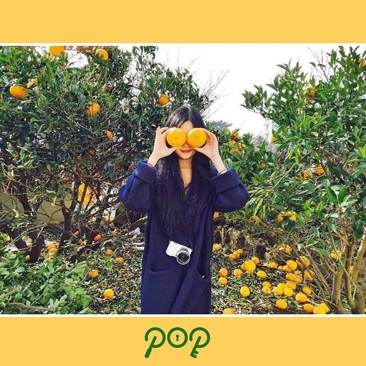 pop teaser image, pop kpop, rbw new girl group, rbw pop, pop mamamoo, pop kpop members, pop kpop profile