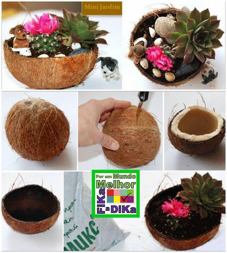 Fika a Dika - Por um Mundo Melhor: Casca do Coco
