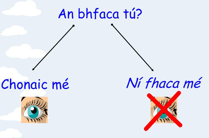 An bhfaca tú - Did you see/ Chonaic mé - I saw / Ní fhaca mé - I didn't see / Feic - to see ( irregular verb )