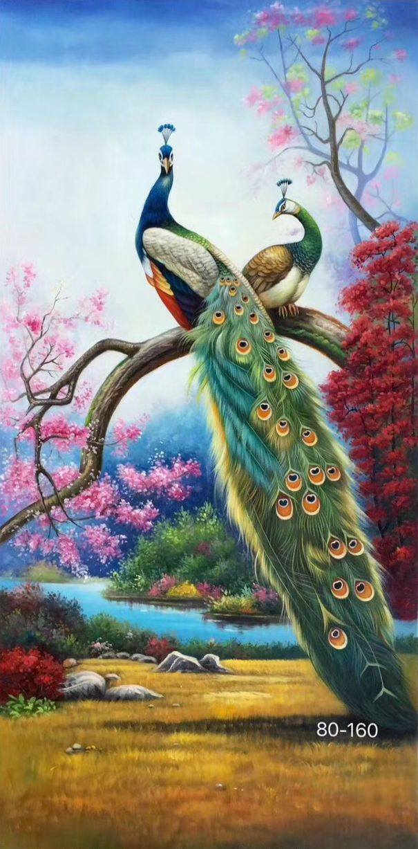 "ID=K67; size:80x160cm(33""x63""inch); 100% hand-made oil painting,decoration,murals,Art,Home Decor,Wall Decor,Abstract,Simple,modern,canvas; #OilPaintingPeacock"