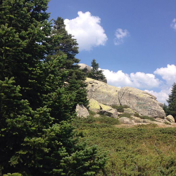 #Çobankaya #Uludağ #Mountain #Rocks
