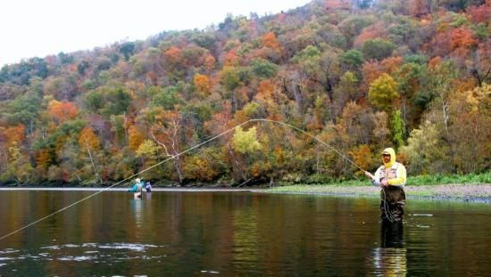 1000 images about lake life on pinterest watercolors for Lake taneycomo fishing