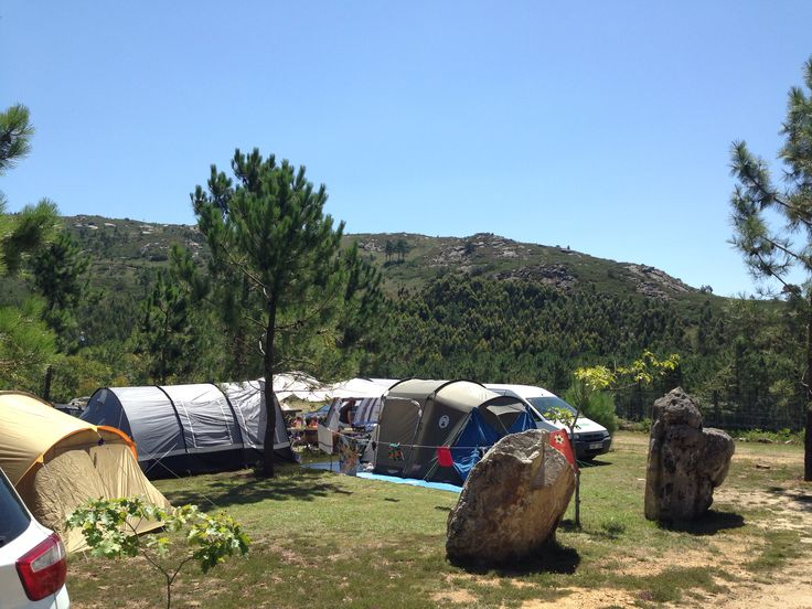 Espacio para todo tipo de tiendas #tent #letsgocamping #campinglife #campingriadearosa #riadearosa2