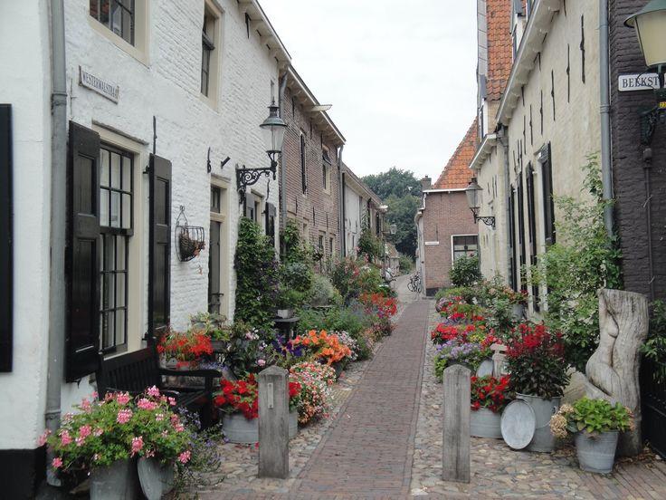 Elburg (Gelderland). http://www.parfumflowercompany.com
