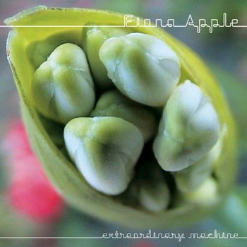 Fiona Apple - Extraordinary Machine Album Cover